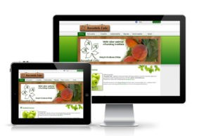 web-sajt-rasadnik-colic