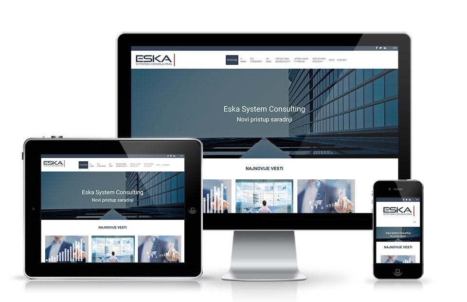 Web sajt za konsultantske agencije