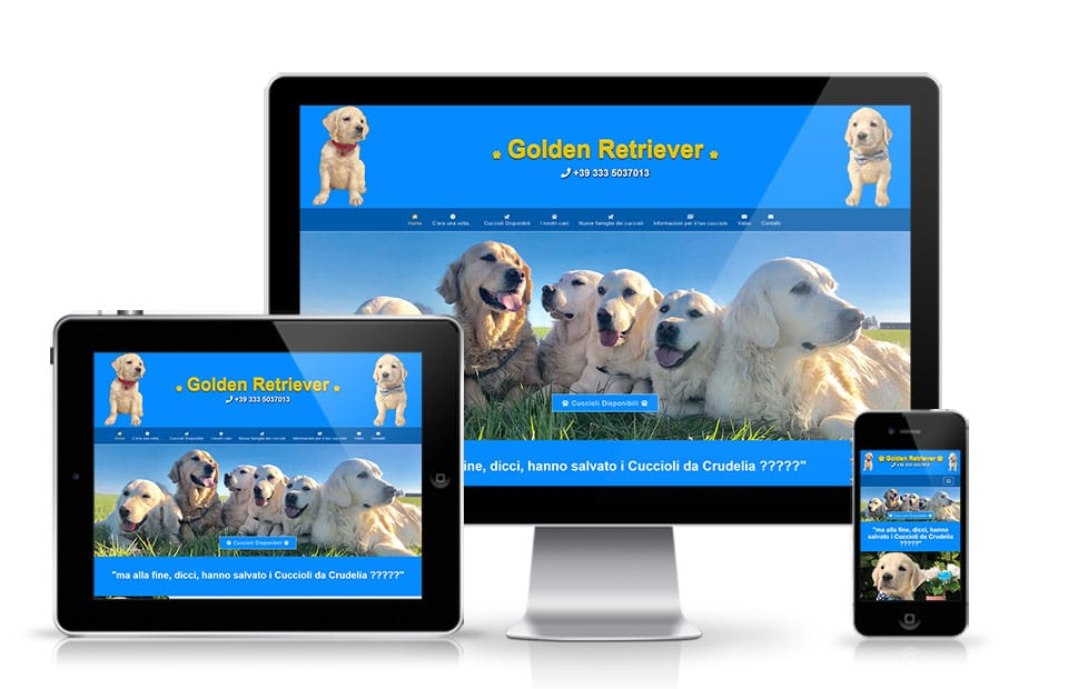 Izrada veb sajta