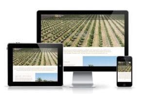 Izrada sajta za prodaju sadnica