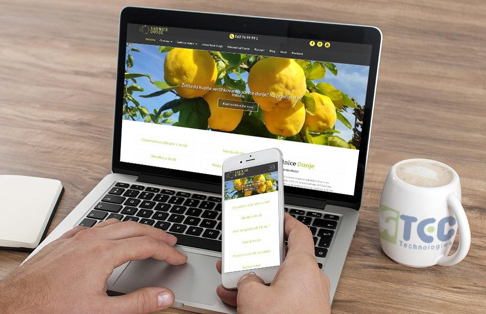 Izrada veb sajtova Kruševac